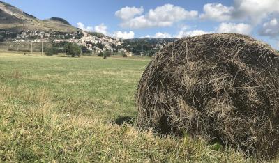 Rivisondoli | Alla scoperta dell'Abruzzo
